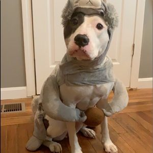Other - Dog squirrel costume